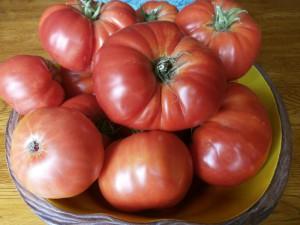 Kim's garden-fresh tomatoes